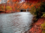 Passaic River in the fall